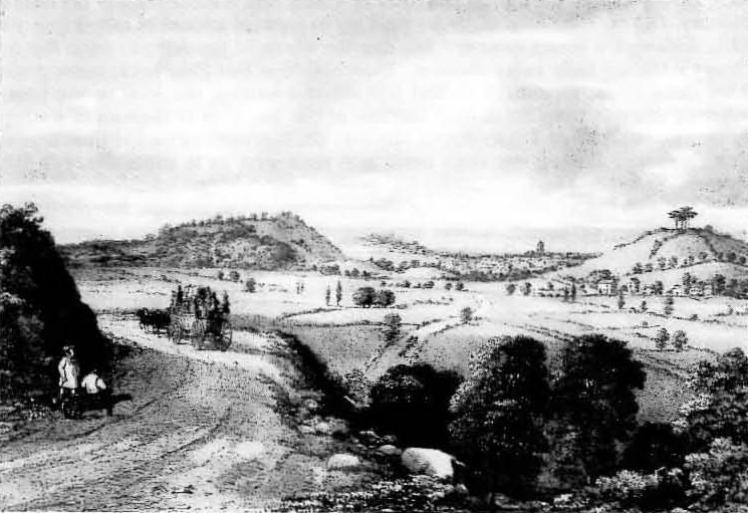 Wyndham Hill